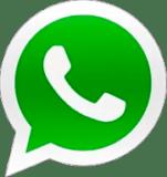 Чат с Александром Дедюхиным в Whatsapp